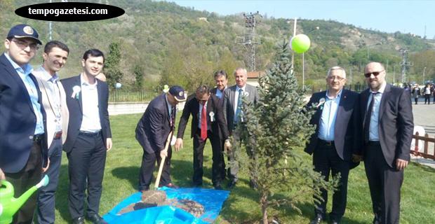 Ak Parti Çaycuma'da ağaç dikti