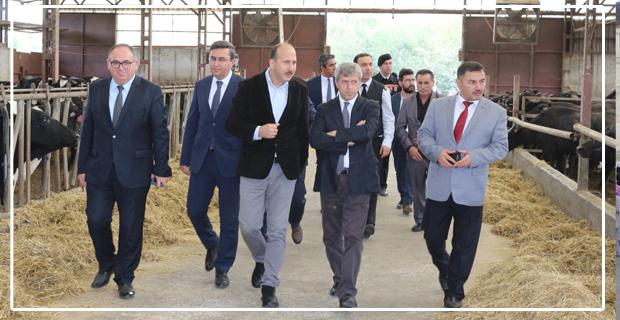 Zonguldak Valisi Ahmet Çınar, Tarım ve Hayvancılık Tesislerini inceledi...