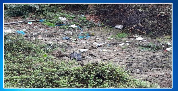 Orman çöp deposu oldu