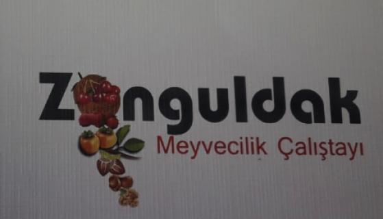 Zonguldak'ta 'Meyvecilik Çalıştayı' düzenleniyor