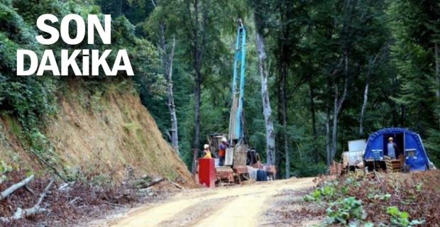 Kanadalı şirket Zonguldak'ta altın sondajına başladı, 10 bin ağaç kesildi