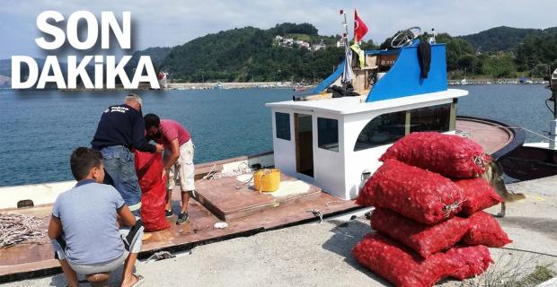 Palamut avlayamayan balıkçılar salyangoza yöneldi
