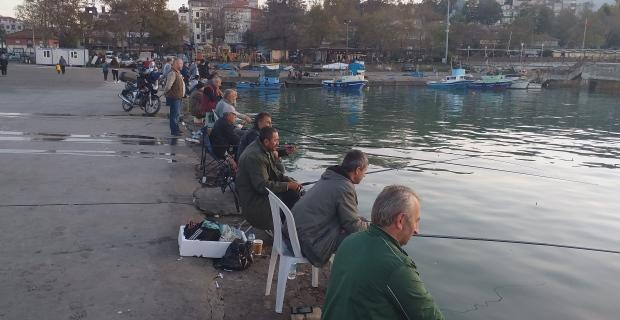 Sahili olta balıkçılarının gözde mekanı haline geldi