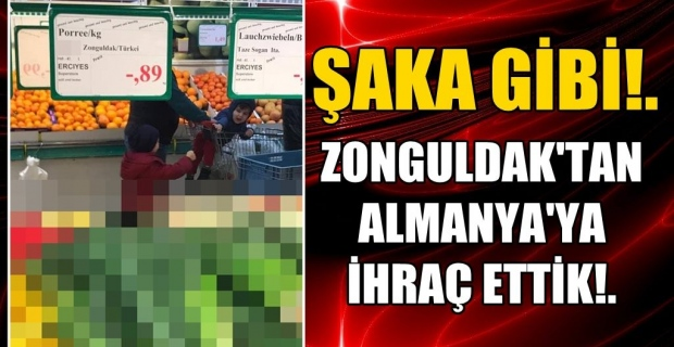 Zonguldak'tan Almanya'ya ihraç ettik!...