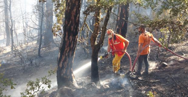 Çevre illerden takviye ekipler geldi: 10 Hektar yanıyor