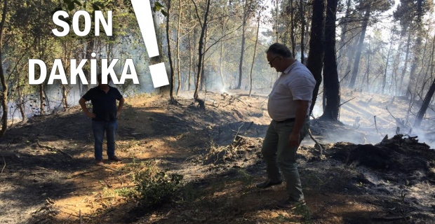 Son Dakika: Yangın kontrol altına alındı