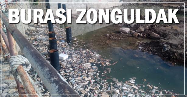 Burası Zonguldak çöplüğü..mü?