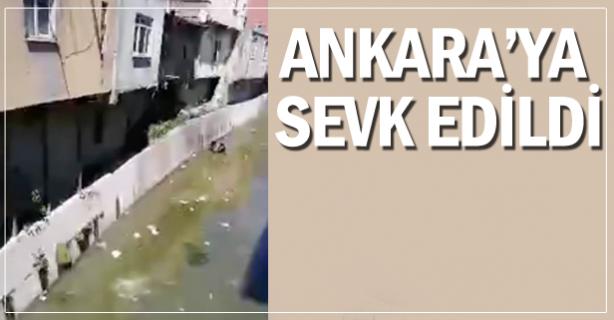 Ankara'ya sevk edilecek