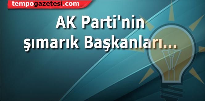 AKP'nin şımarıkları...