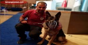 STANO adlı köpek Zonguldak Emniyetine ödül getirdi!..