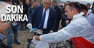HAMSİ FESTİVALİ BAŞLADI