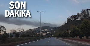 Çıkan yangının dumanı Kozlu'dan görüldü..