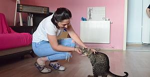 Engelli kediye umut oldular