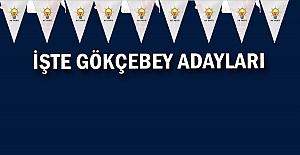 İşte Gökçebey AK Parti adayları!