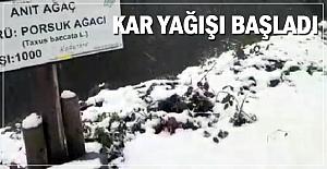 Kar yağışı Gümeli'den başladı