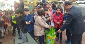 Öğrenciler, sokak hayvanlarını elleriyle beslediler...