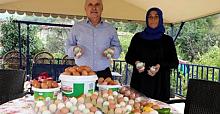 Yeşil renkli yumurta üretimi ile taleplere yetişemiyor