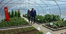 Ereğli Belediyesi 12 çeşit üründe ata tohumu üretiyor