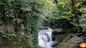 Zonguldak Harmankaya Şelaleleri (Zonguldak Merkez)